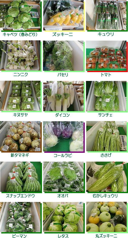 7gatu_joujun_yasai.jpg