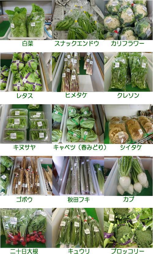 sanchoku_yasai_6gatu.jpg