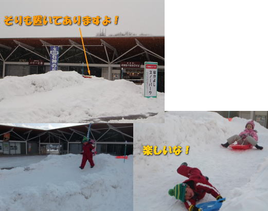 suberidai_newphoto.jpg